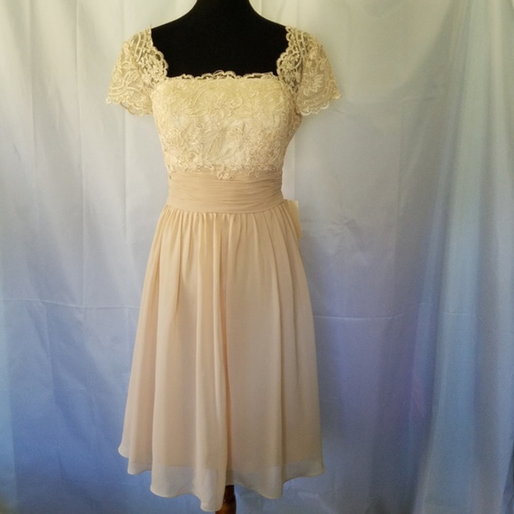 Light in the Box Dresses & Skirts - LIGHT IN THE BOX CHAMPAGNE LACE & CHIFFON DRESS